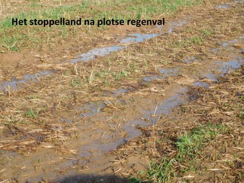 16-het-stoppelland-na-plotse-regenval